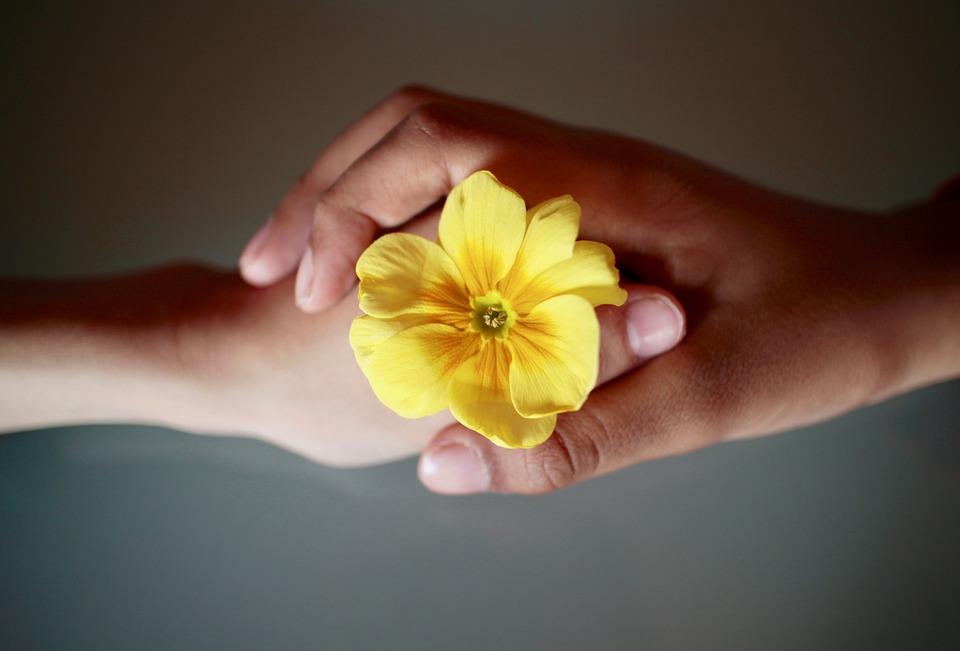 Hænder og blomst