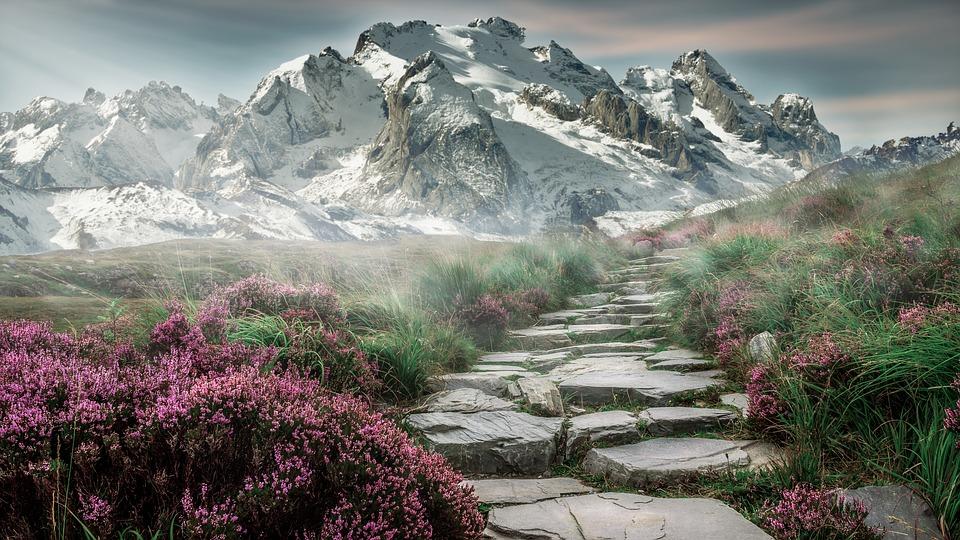 Bjerge med sti